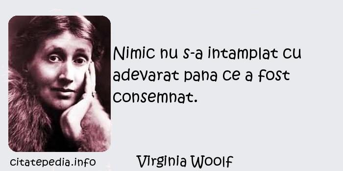 Virginia Woolf - Nimic nu s-a intamplat cu adevarat pana ce a fost consemnat.