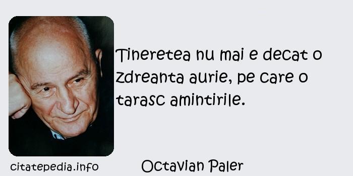 Octavian Paler - Tineretea nu mai e decat o zdreanta aurie, pe care o tarasc amintirile.