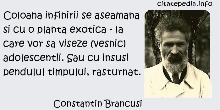 Constantin Brancusi - Coloana infinirii se aseamana si cu o planta exotica - la care vor sa viseze (vesnic) adolescentii. Sau cu insusi pendulul timpului, rasturnat.