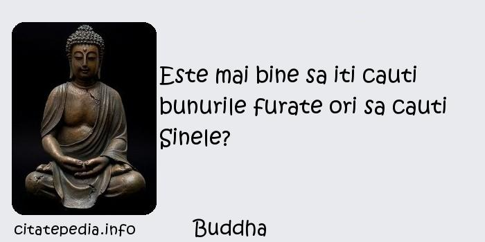 Buddha - Este mai bine sa iti cauti bunurile furate ori sa cauti Sinele?