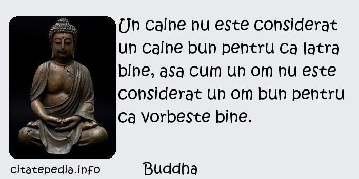 Buddha - Un caine nu este considerat un caine bun pentru ca latra bine, asa cum un om nu este considerat un om bun pentru ca vorbeste bine.