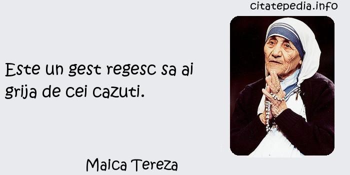 Maica Tereza - Este un gest regesc sa ai grija de cei cazuti.