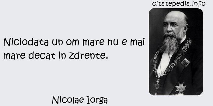 Nicolae Iorga - Niciodata un om mare nu e mai mare decat in zdrente.