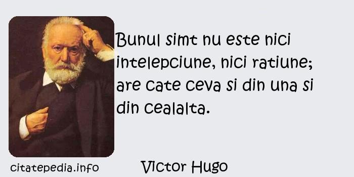 Victor Hugo - Bunul simt nu este nici intelepciune, nici ratiune; are cate ceva si din una si din cealalta.