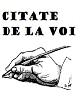 Citatepedia.info - Citate de la voi - Citate Despre Prostie