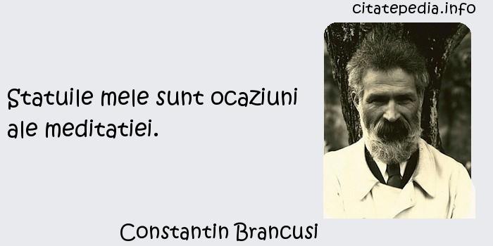 Constantin Brancusi - Statuile mele sunt ocaziuni ale meditatiei.