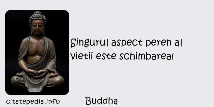 Buddha - Singurul aspect peren al vietii este schimbarea!