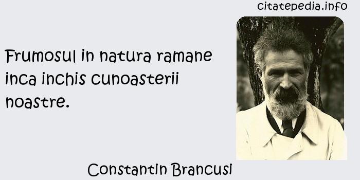 Constantin Brancusi - Frumosul in natura ramane inca inchis cunoasterii noastre.