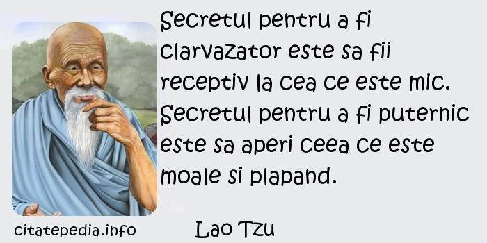 Lao Tzu - Secretul pentru a fi clarvazator este sa fii receptiv la cea ce este mic. Secretul pentru a fi puternic este sa aperi ceea ce este moale si plapand.