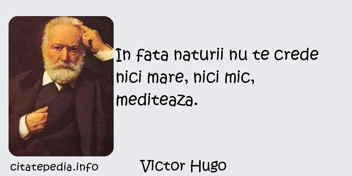 Victor Hugo - In fata naturii nu te crede nici mare, nici mic, mediteaza.