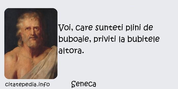 Seneca - Voi, care sunteti plini de buboaie, priviti la bubitele altora.
