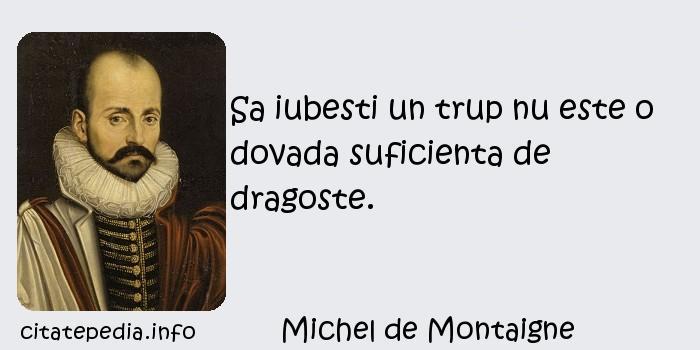 Michel de Montaigne - Sa iubesti un trup nu este o dovada suficienta de dragoste.
