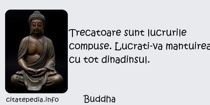 Buddha - Trecatoare sunt lucrurile compuse. Lucrati-va mantuirea cu tot dinadinsul.