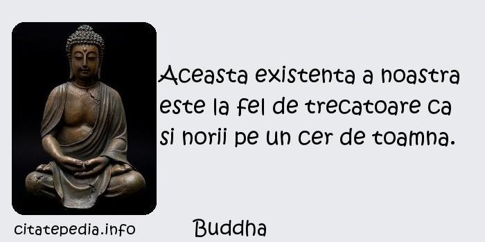 Buddha - Aceasta existenta a noastra este la fel de trecatoare ca si norii pe un cer de toamna.