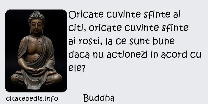 Buddha - Oricate cuvinte sfinte ai citi, oricate cuvinte sfinte ai rosti, la ce sunt bune daca nu actionezi in acord cu ele?