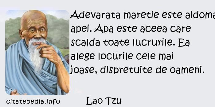 Lao Tzu - Adevarata maretie este aidoma apei. Apa este aceea care scalda toate lucrurile. Ea alege locurile cele mai joase, dispretuite de oameni.