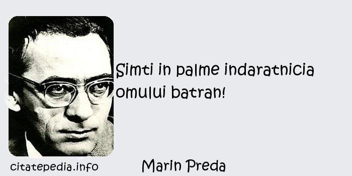 Marin Preda - Simti in palme indaratnicia omului batran!