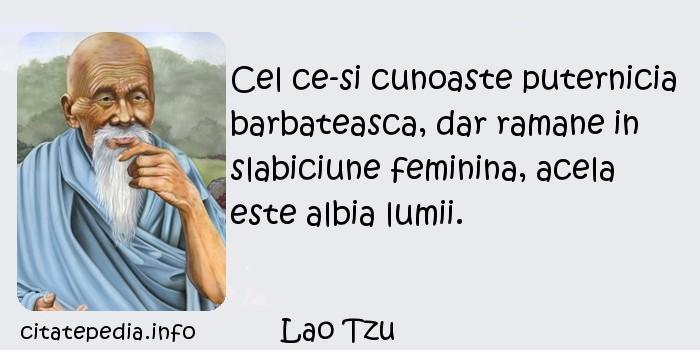 Lao Tzu - Cel ce-si cunoaste puternicia barbateasca, dar ramane in slabiciune feminina, acela este albia lumii.