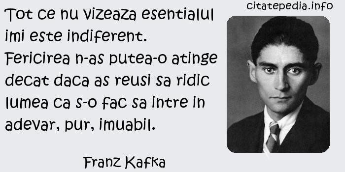 Franz Kafka - Tot ce nu vizeaza esentialul imi este indiferent. Fericirea n-as putea-o atinge decat daca as reusi sa ridic lumea ca s-o fac sa intre in adevar, pur, imuabil.