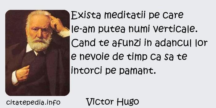 Victor Hugo - Exista meditatii pe care le-am putea numi verticale. Cand te afunzi in adancul lor e nevoie de timp ca sa te intorci pe pamant.