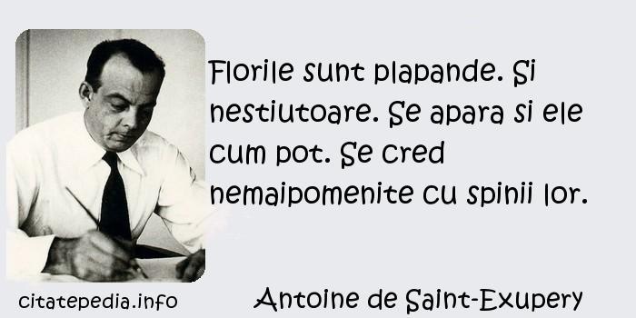 Antoine de Saint-Exupery - Florile sunt plapande. Si nestiutoare. Se apara si ele cum pot. Se cred nemaipomenite cu spinii lor.