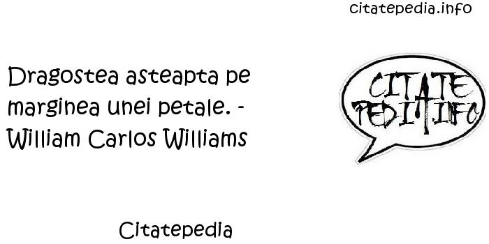 Citatepedia - Dragostea asteapta pe marginea unei petale. - William Carlos Williams
