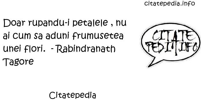 Citatepedia - Doar rupandu-i petalele , nu ai cum sa aduni frumusetea unei flori.  - Rabindranath Tagore