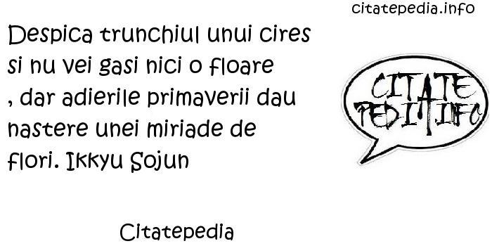 Citatepedia - Despica trunchiul unui cires si nu vei gasi nici o floare , dar adierile primaverii dau nastere unei miriade de flori. Ikkyu Sojun
