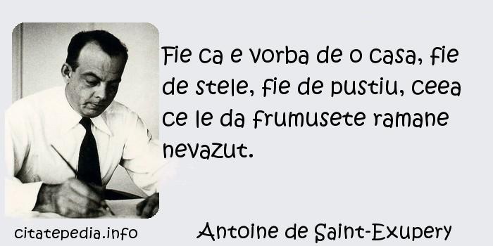Antoine de Saint-Exupery - Fie ca e vorba de o casa, fie de stele, fie de pustiu, ceea ce le da frumusete ramane nevazut.