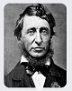 Citatepedia.info - Henry David Thoreau - Citate Despre Om
