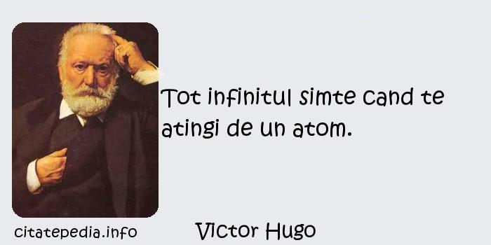 Victor Hugo - Tot infinitul simte cand te atingi de un atom.