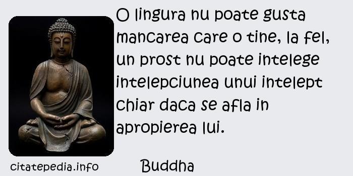 Buddha - O lingura nu poate gusta mancarea care o tine, la fel, un prost nu poate intelege intelepciunea unui intelept chiar daca se afla in apropierea lui.