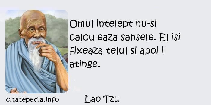 Lao Tzu - Omul intelept nu-si calculeaza sansele. El isi fixeaza telul si apoi il atinge.