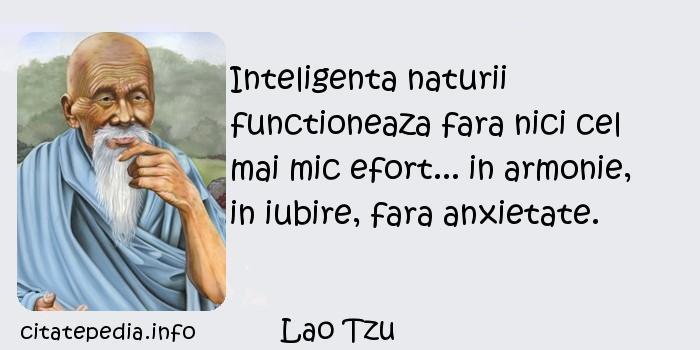 Lao Tzu - Inteligenta naturii functioneaza fara nici cel mai mic efort... in armonie, in iubire, fara anxietate.