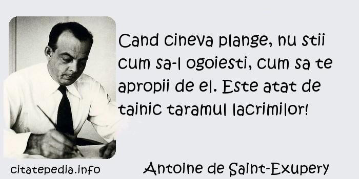 Antoine de Saint-Exupery - Cand cineva plange, nu stii cum sa-l ogoiesti, cum sa te apropii de el. Este atat de tainic taramul lacrimilor!