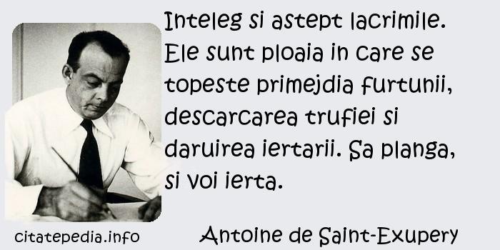 Antoine de Saint-Exupery - Inteleg si astept lacrimile. Ele sunt ploaia in care se topeste primejdia furtunii, descarcarea trufiei si daruirea iertarii. Sa planga, si voi ierta.