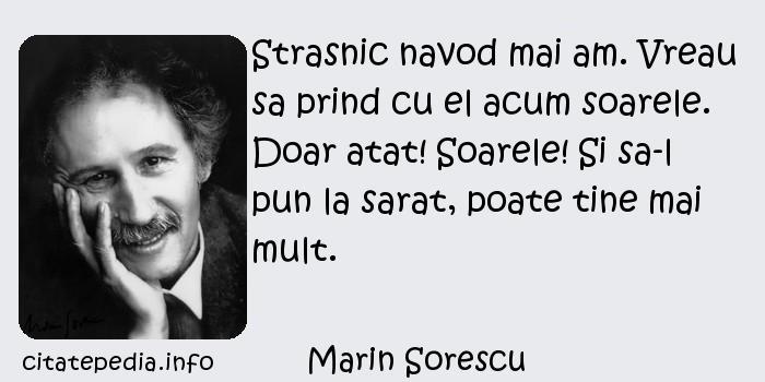 Marin Sorescu - Strasnic navod mai am. Vreau sa prind cu el acum soarele. Doar atat! Soarele! Si sa-l pun la sarat, poate tine mai mult.