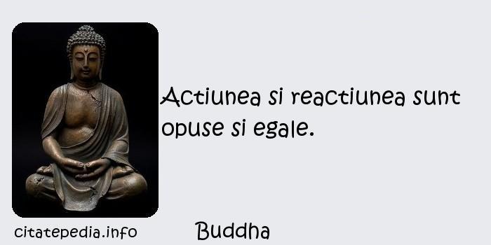 Buddha - Actiunea si reactiunea sunt opuse si egale.