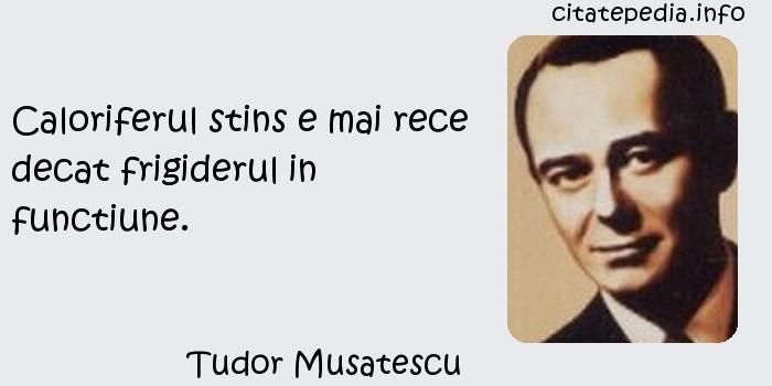Tudor Musatescu - Caloriferul stins e mai rece decat frigiderul in functiune.