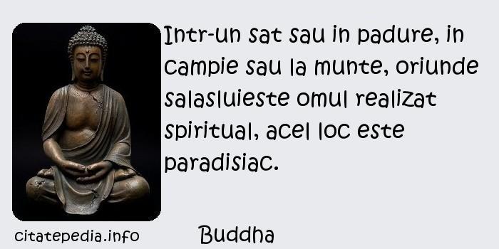 Buddha - Intr-un sat sau in padure, in campie sau la munte, oriunde salasluieste omul realizat spiritual, acel loc este paradisiac.