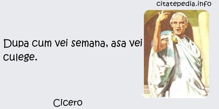 Cicero - Dupa cum vei semana, asa vei culege.