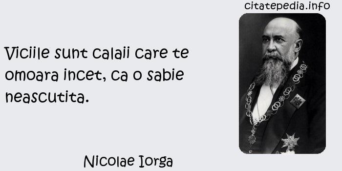 Nicolae Iorga - Viciile sunt calaii care te omoara incet, ca o sabie neascutita.