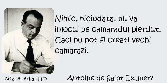 Antoine de Saint-Exupery - Nimic, niciodata, nu va inlocui pe camaradul pierdut. Caci nu pot fi creati vechi camarazi.