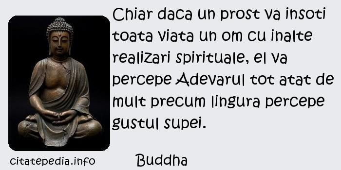 Buddha - Chiar daca un prost va insoti toata viata un om cu inalte realizari spirituale, el va percepe Adevarul tot atat de mult precum lingura percepe gustul supei.
