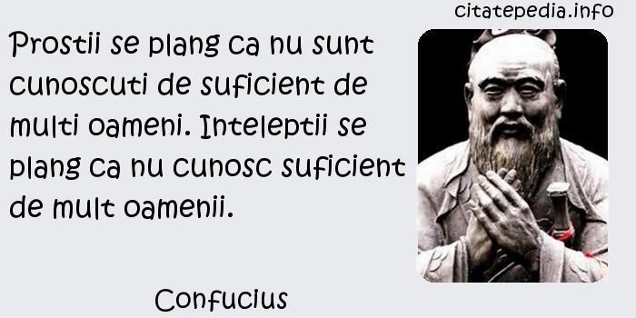 Confucius - Prostii se plang ca nu sunt cunoscuti de suficient de multi oameni. Inteleptii se plang ca nu cunosc suficient de mult oamenii.