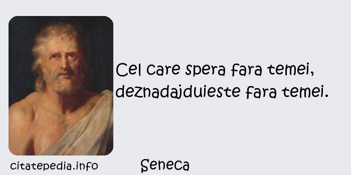 Seneca - Cel care spera fara temei, deznadajduieste fara temei.