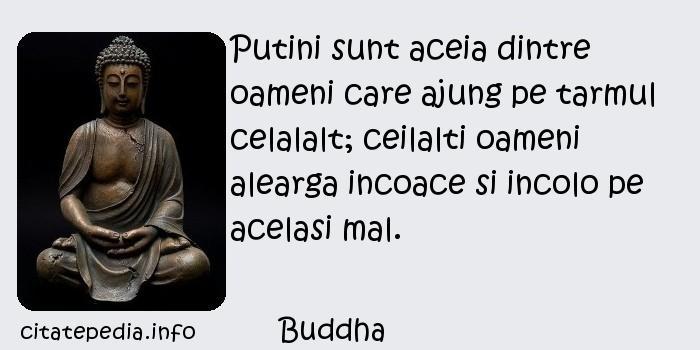 Buddha - Putini sunt aceia dintre oameni care ajung pe tarmul celalalt; ceilalti oameni alearga incoace si incolo pe acelasi mal.