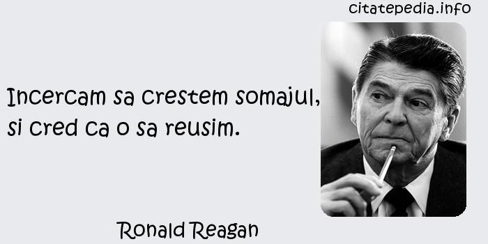 Ronald Reagan - Incercam sa crestem somajul, si cred ca o sa reusim.