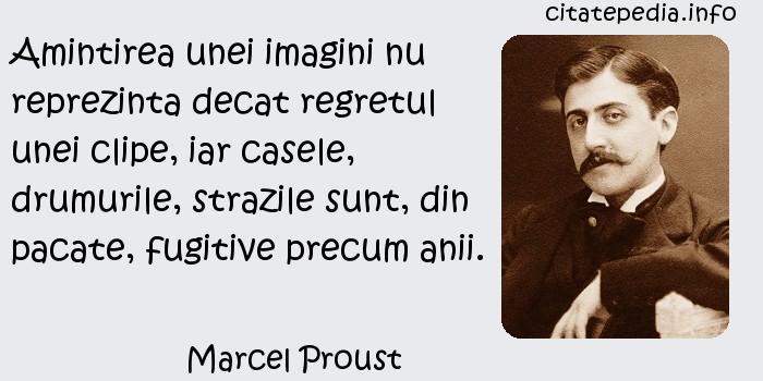 Marcel Proust - Amintirea unei imagini nu reprezinta decat regretul unei clipe, iar casele, drumurile, strazile sunt, din pacate, fugitive precum anii.