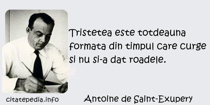 Antoine de Saint-Exupery - Tristetea este totdeauna formata din timpul care curge si nu si-a dat roadele.